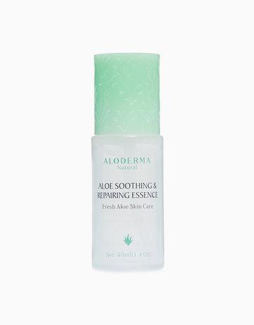 Soothing & Repairing Essence by Aloderma