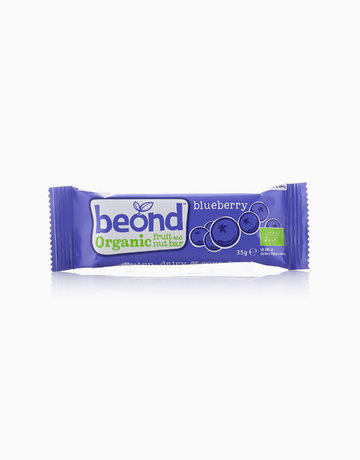 Blueberry Organic Fruit Bar by Beond