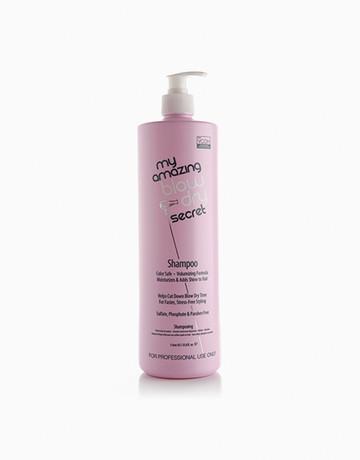 Virgin Coconut Oil Shampoo by My Amazing Hair Secrets