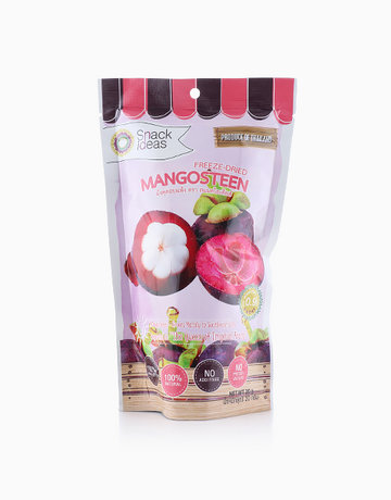Freeze-Dried Mangosteen (20g) by Snack Ideas