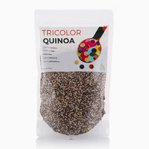 Raw Bites Tri Color Quinoa (500g) by Raw Bites
