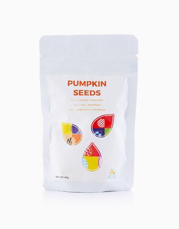 Pumpkin Seeds (60g) by Raw Bites