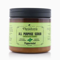 All Purpose Scrub Antibacterial Cleaner by Theodore's Home Care