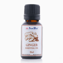 Ginger Essential Oil (18ml) by Pure Bliss