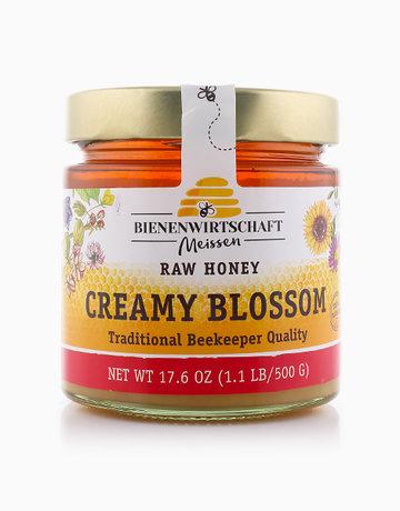 Creamy Blossom Raw Honey by Bienenwirtshaft