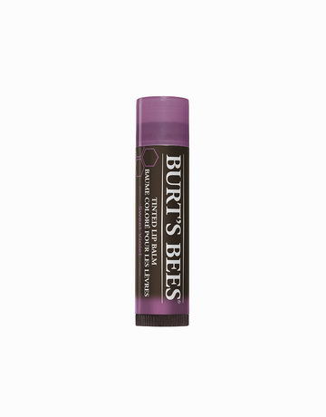 Tinted Lip Balm in Sweet Violet by Burt's Bees