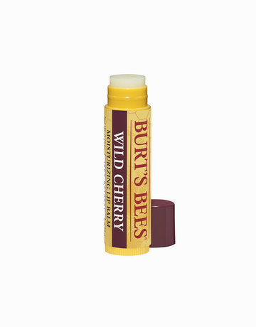 Lip Balm in Wild Cherry by Burt's Bees