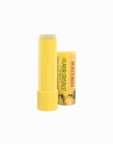 Flavor Crystals in Tropical Pineapple by Burt's Bees
