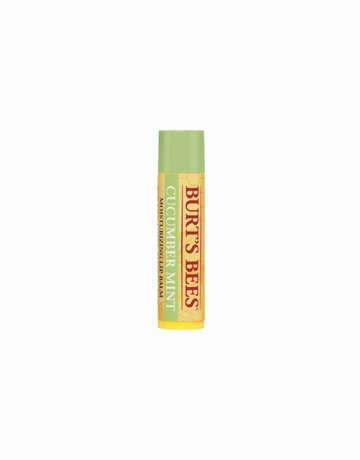 Mint Lip Balm in Cucumber by Burt's Bees