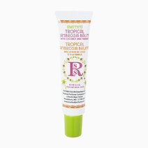 Smith's Tropical Ambrosia Balm Tube by Smith's Rosebud Salve