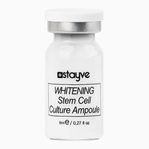 Whitening Stem Cell Culture Ampoule (8ml) by Stayve