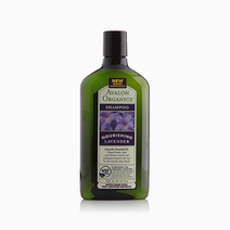 Nourishing Lavender Shampoo by Avalon Organics
