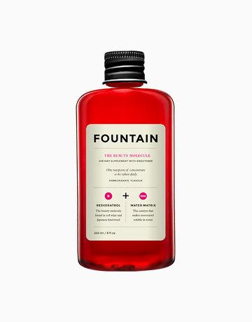 The Beauty Molecule by Fountain