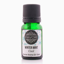Winter Mint 10ml Burner Aroma by FAVORI
