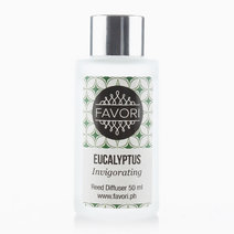 Eucalyptus 50ml Regular Reed Diffuser by FAVORI