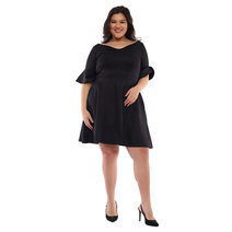 Katrina Flounce Sleeves Fit and Flare Dress by Plum
