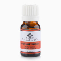 Orange Sweet Essential Oil by Botanicals in Bloom
