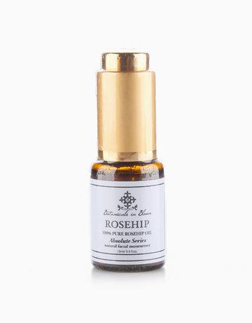 100% Rosehip Oil by Botanicals in Bloom