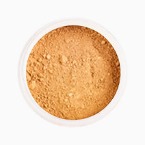 Almond Latte Loose Mineral Foundation [with Jar] by Ellana Mineral Cosmetics