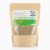 Mango Kernel Flour (250g) by GEMS