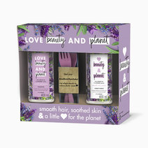 Argan Oil & Lavender Hair Care Gift Bundle by Love Beauty and Planet