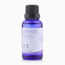 Lavender Essential Oil (30ml) by Bathgems