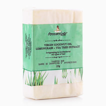 Tea Tree Extract VCO Shampoo Bar by Aromacology Sensi