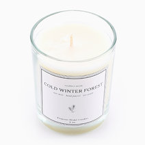 Cold Winter Forest Soy Candle (6oz) by Fragrant Home Candles