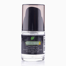Aloe Calendula Face Serum by Zenutrients