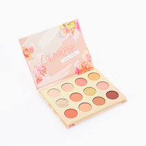 Sweet Talk Pressed Powder Shadow Palette by ColourPop