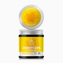 Cordyceps (30g) by Hybrid Herbs