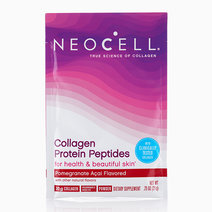 Pomegranate Collagen Peptides Protein Powder (20g) by Neocell