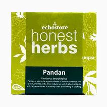 Pandan Tea (14s)  by ECHOstore