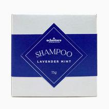 Shampoo Bar (75g) by ECHOstore
