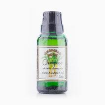 Champaca Essential Oil (30ml) by Lemongrass House