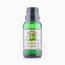 Rosemary Essential Oil (30ml) by Lemongrass House