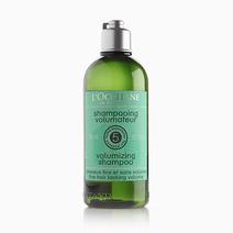 Volumizing Shampoo (300ml) by L'Occitane
