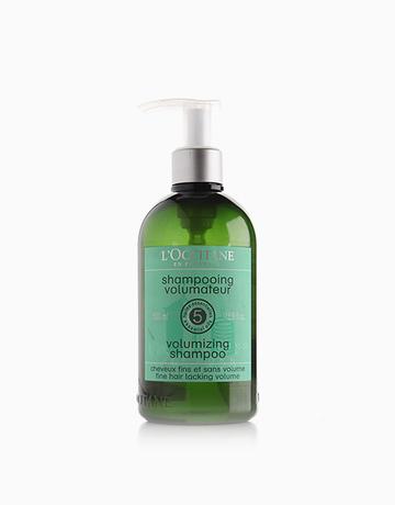 Volumizing Shampoo (500ml) by L'Occitane