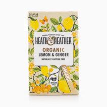 Organic Lemon & Ginger Tea by Heath & Heather