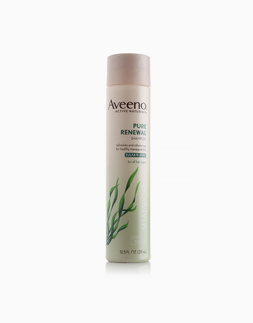 Pure Renewal Shampoo by Aveeno