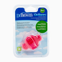 Orthees Transition Teether  by Dr. Brown's