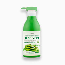 Aloe Vera Soothing Lotion by Esfolio