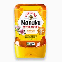 Manuka Honey MGO 30+ by Capilano