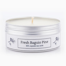 Fresh Baguio Pine Soy Candle (4oz) by Calyx Life & Home
