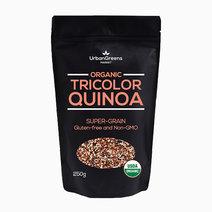Organic Tricolor Quinoa (250g) by UrbanGreens Market