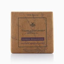 Verbena Soap by Ysabel's Daughter