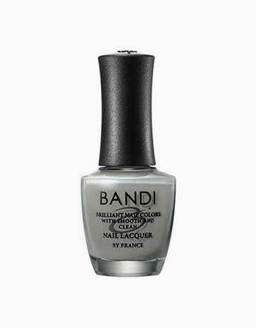 Cashmere Gray by Bandi