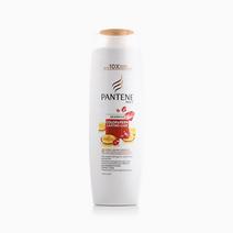 Color Care Shampoo 320ml by Pantene