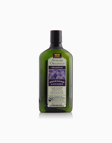 Lavender Shampoo by Avalon Organics