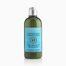 Anti-Dandruff Shampoo by L'Occitane